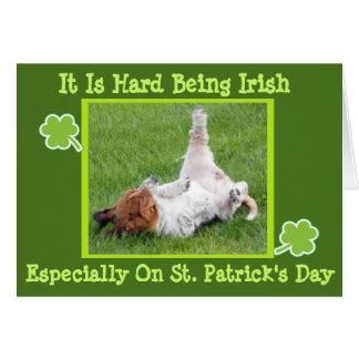 Cartão w/Basset do dia de St Patrick engraçado &