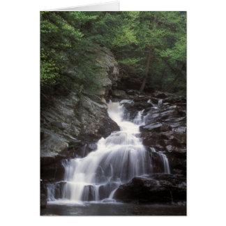 Cartão Waconah cai Berkshires Massachusetts