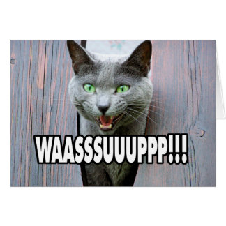 Cartão WASSUP - Gato Meme