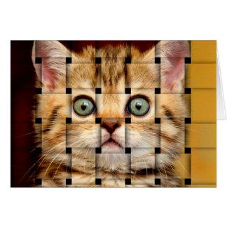 Cartão Weave do gato