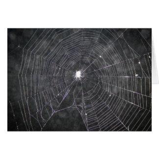 Cartão Web de aranha na noite