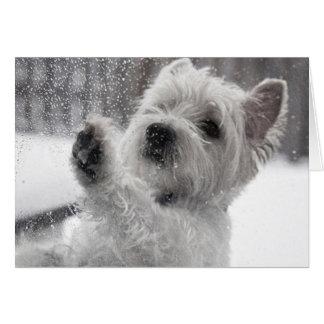 Cartão Westie na chuva