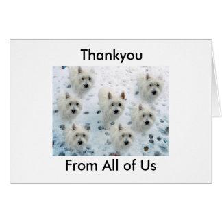 Cartão Westie Thankyou para tomar a bom cuidado de nós o