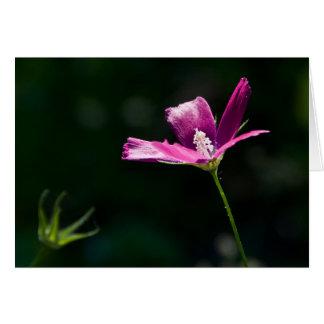 Cartão Wildflower magenta Notecard