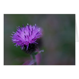 Cartão Wildflower roxo