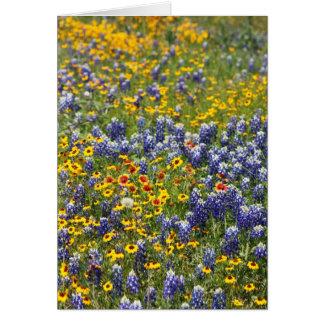 Cartão Wildflowers de Texas por Cynthia Wenslow