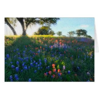 Cartão Wildflowers na luz da noite