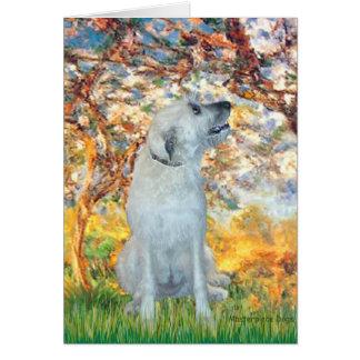 Cartão Wolfhound irlandês 4 - primavera