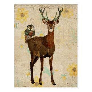 Cartão Woodsy da coruja dos alces & da cerceta Cartões Postais