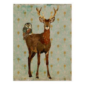 Cartão Woodsy do damasco da coruja dos alces & da  Cartão Postal