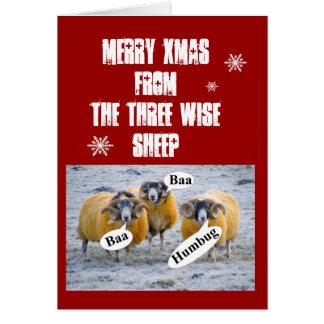 Cartão Xmas da feliz dos três carneiros sábios
