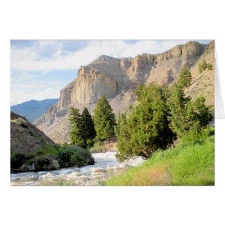Cartão Yellowstone River