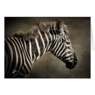 Cartão Zebra selvagem