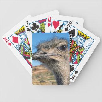 Cartas De Baralho Harry a avestruz feliz