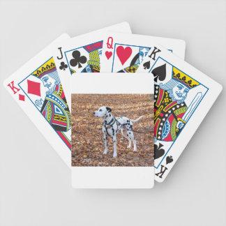 Cartas De Baralho Kevin o Dalmatian