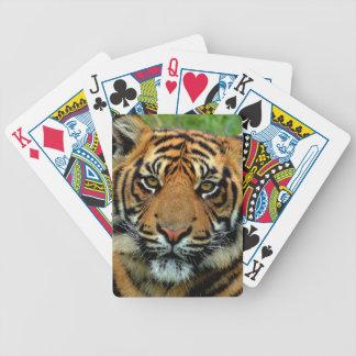 Cartas De Baralho Tigre