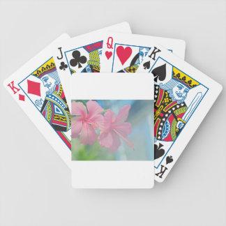 Cartas De Baralho Tiro macro macio de flores cor-de-rosa do hibiscus