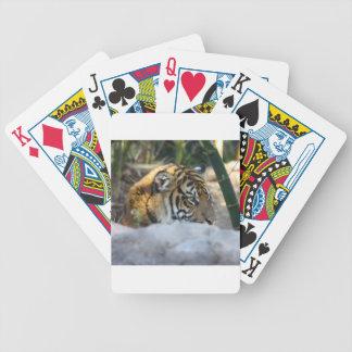Cartas De Baralhos Tigre