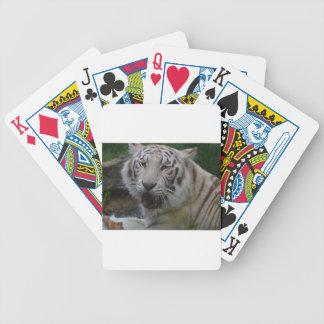 Cartas De Baralhos Tigre branco
