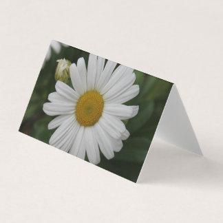 Cartões da flor da margarida