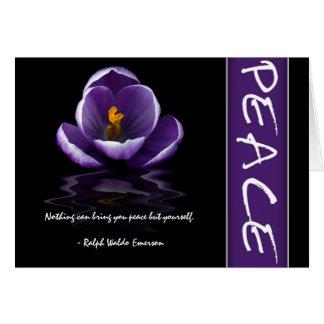 Cartões da paz