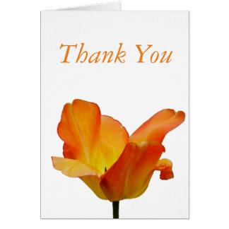 Cartões de agradecimentos alaranjados da tulipa