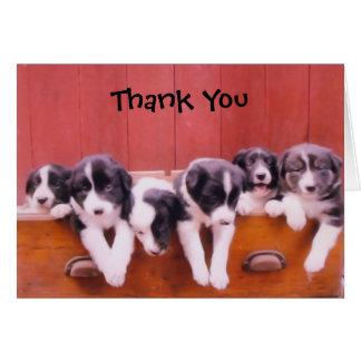 Cartões de agradecimentos bonitos dos filhotes de