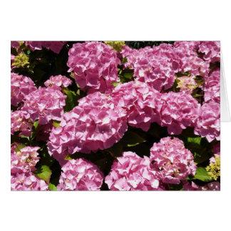 Cartões de agradecimentos cor-de-rosa da