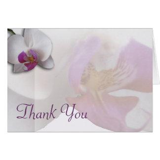 Cartões de agradecimentos cor-de-rosa da orquídea