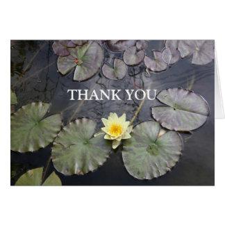 Cartões de agradecimentos da almofada de lírio