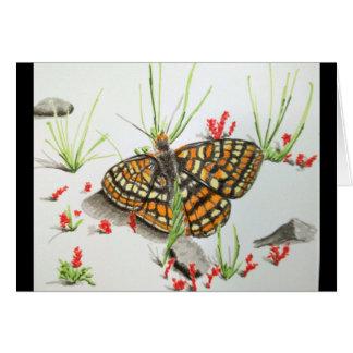 Cartões de agradecimentos da borboleta