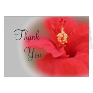 Cartões de agradecimentos da flor do hibiscus