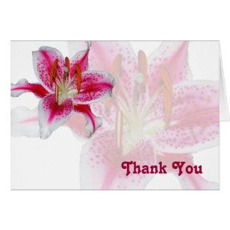 Cartões de agradecimentos da silhueta do Stargazer