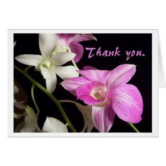 Cartões de agradecimentos das orquídeas