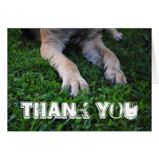 Cartões de agradecimentos das patas do german