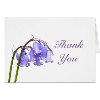 Cartões de agradecimentos do Bluebell