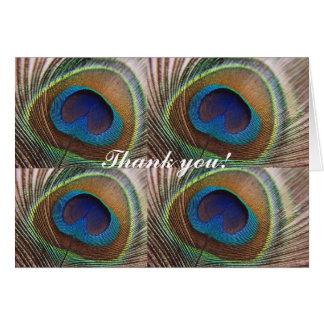 Cartões de agradecimentos do pavão