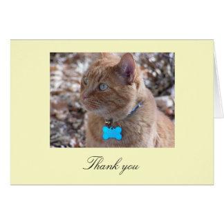 Cartões de agradecimentos do slugger