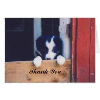 Cartões de agradecimentos doces do cão de filhote