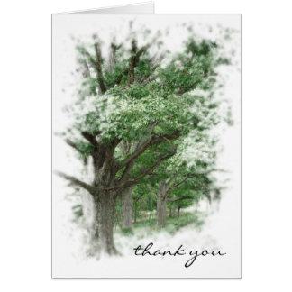 Cartões de agradecimentos dos carvalhos