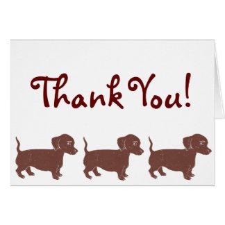 Cartões de agradecimentos dos Dachshunds