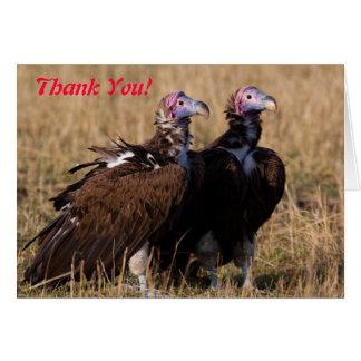 Cartões de agradecimentos dos pares do abutre