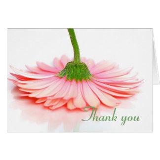 Cartões de agradecimentos feitos para o