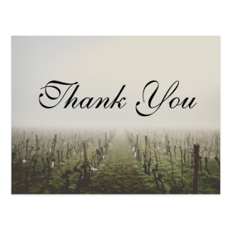 Cartões de agradecimentos nevoentos do vinhedo cartão postal