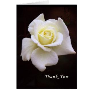Cartões de agradecimentos para a simpatia & as