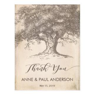 Cartões de agradecimentos velhos da árvore