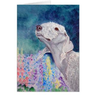 Cartões de Bedlington Terrier