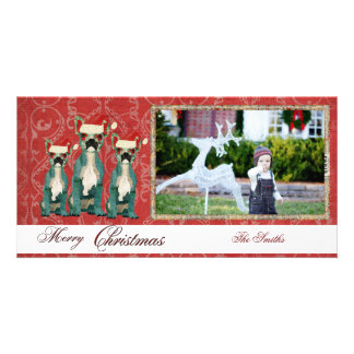 Cartões de foto de Natal de três buldogues frances Cartao Com Fotos