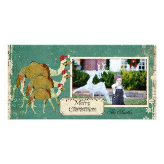 Cartões de foto de Natal sonhadores dos camelos Cartao Com Foto