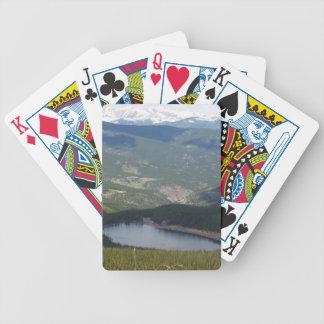 Cartões de jogo baralho de truco